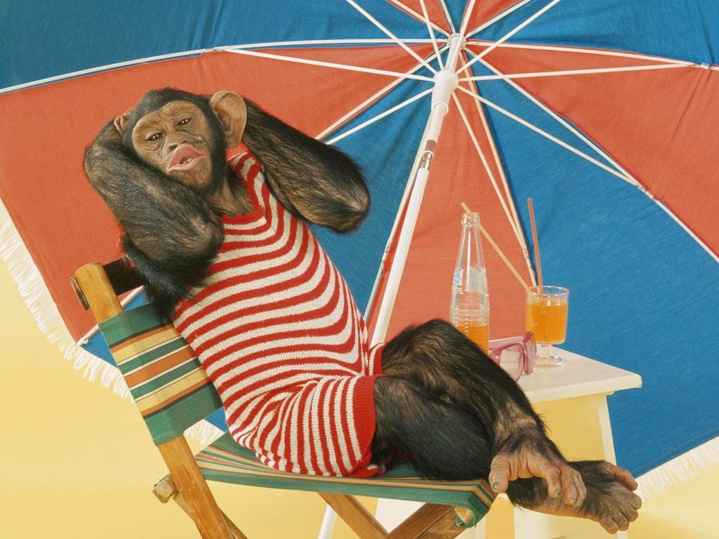Открытках, прикольные картинки на тему отпуска на аватарку