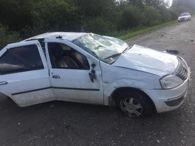 ДТП 12.08.2019, опрокидывание на трассе, Renault Logan (фото mvd.ru)