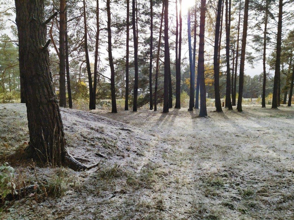 гнездово погода осень зима смоленск