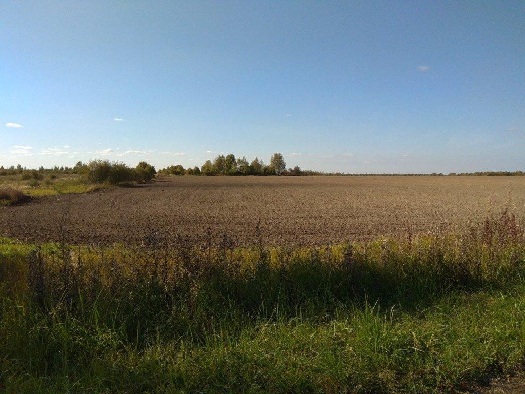 вспаханое поле в деревне Зимницы Сафоновского района (фото vk.com kakdelasafonovo)