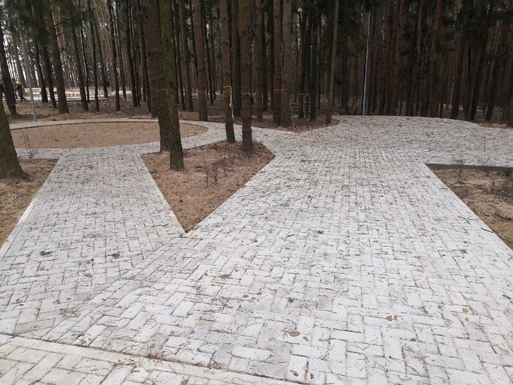 парк Становище Бужа 25.11.2019, Дорогобуж, рабочая поездка Островского (1)