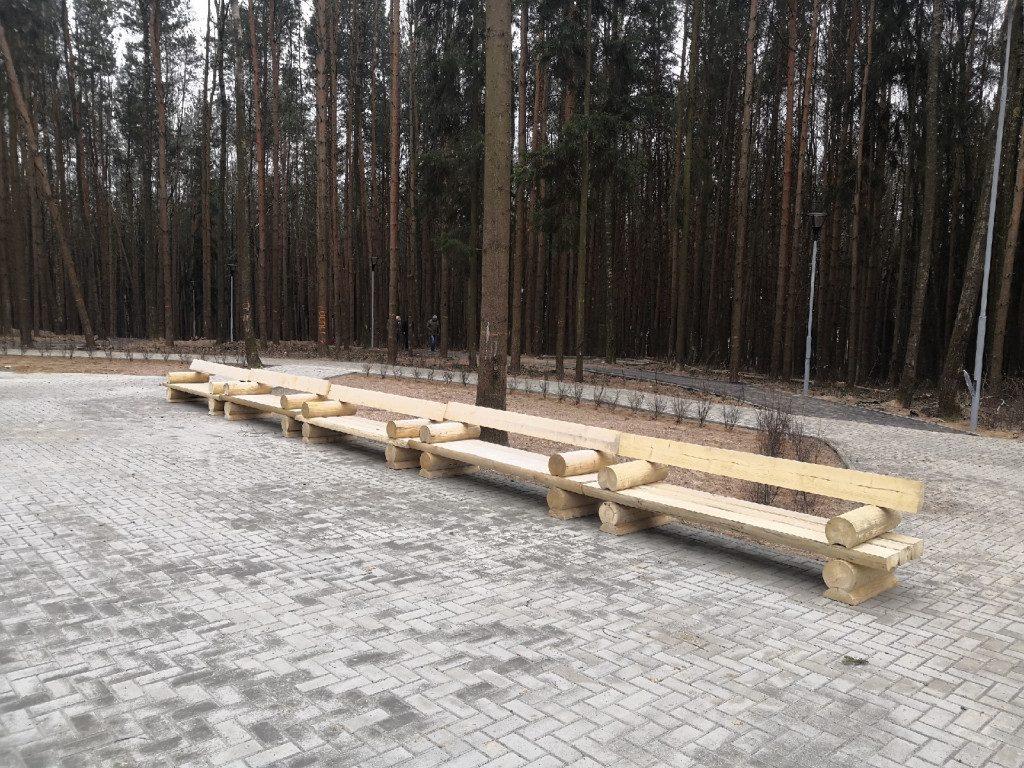 парк Становище Бужа 25.11.2019, Дорогобуж, рабочая поездка Островского (7)