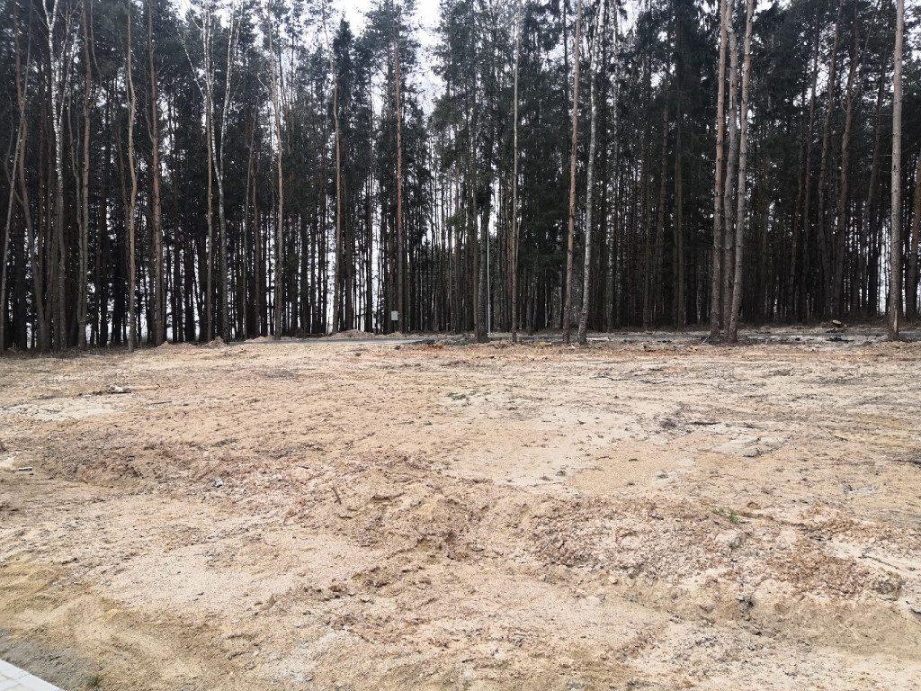 парк Становище Бужа 25.11.2019, Дорогобуж, рабочая поездка Островского (8)