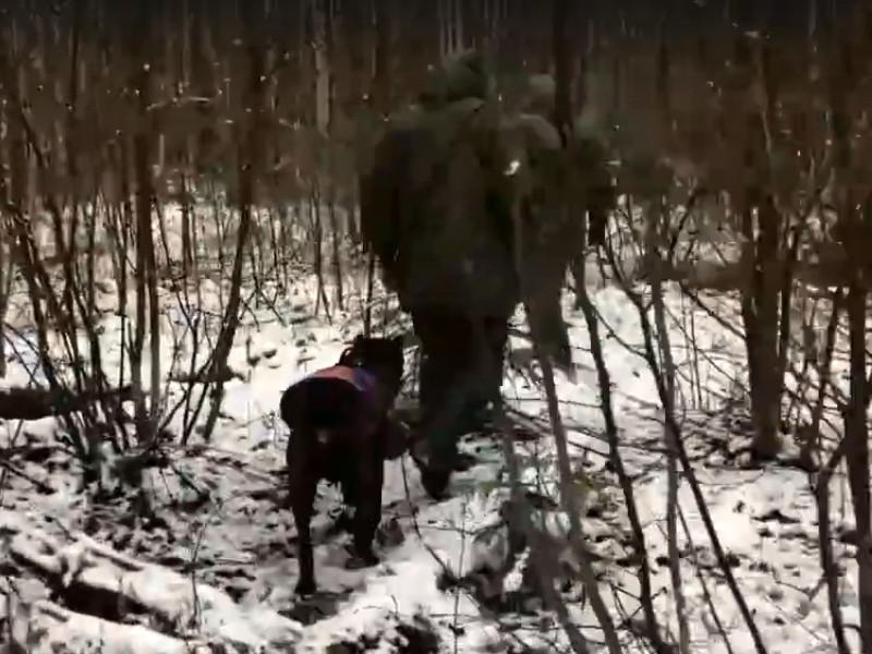 Влад Бахов, Сальвар, поиски (кадр видео vk.com id1913855)