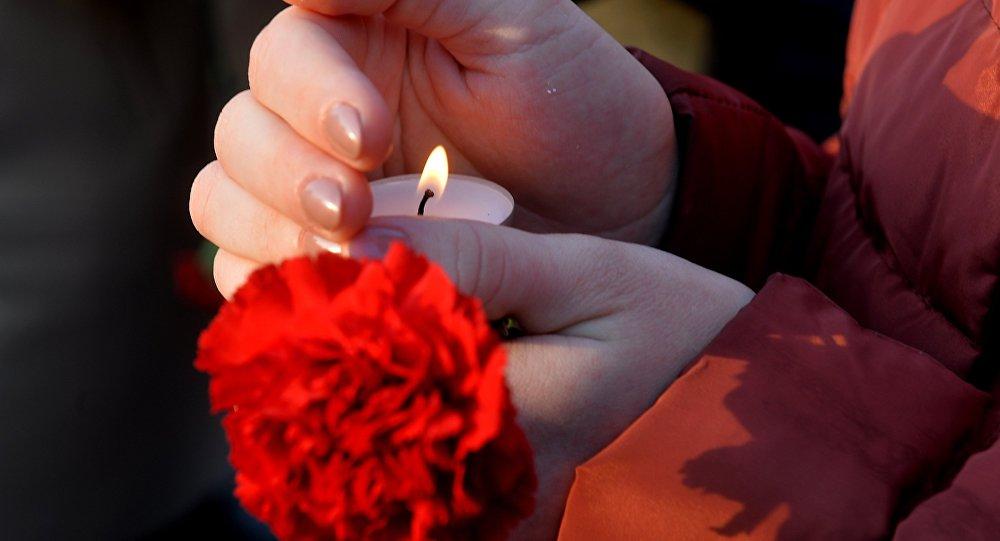 гвоздики свеча