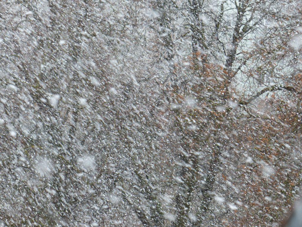 метель, снегопад, порывистый ветер