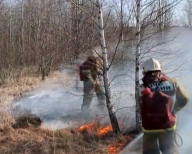 пожар мчс пал травы