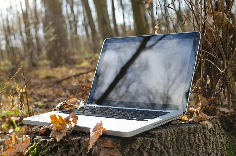 фай фай интернет ноутбук