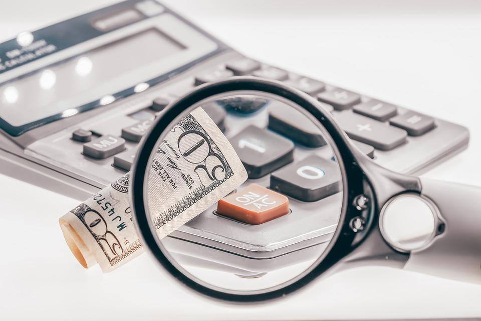 лупа изучение документы стоимость цена