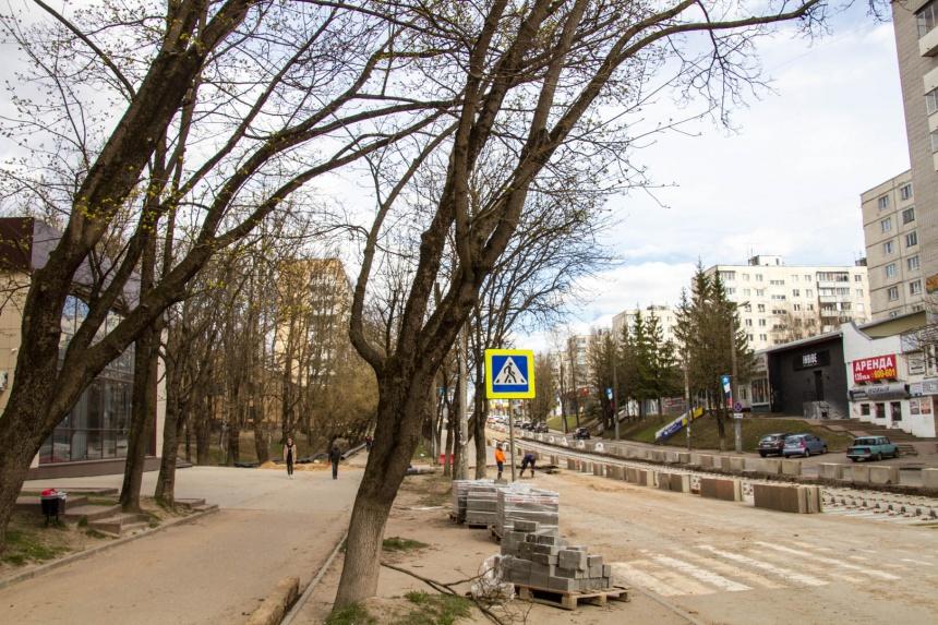 улица Николаева, старое дерево, реконструкция (фото smoladmin.ru)
