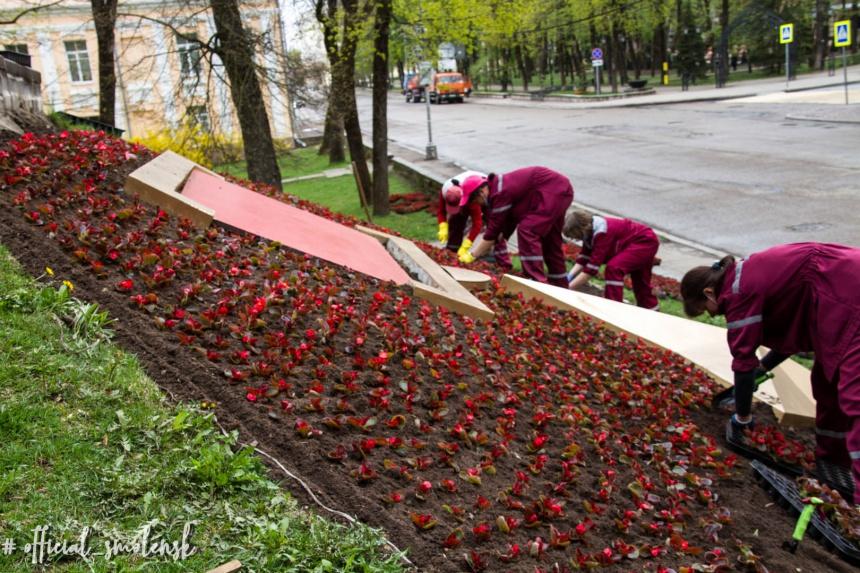 czvetniki-zelenstroj