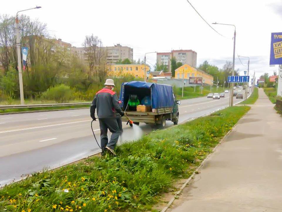 обработка гербицидами от борщевика, проспект Гагарина (фото vk.com official_smolensk)