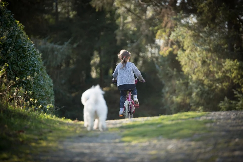 девочка велосипед