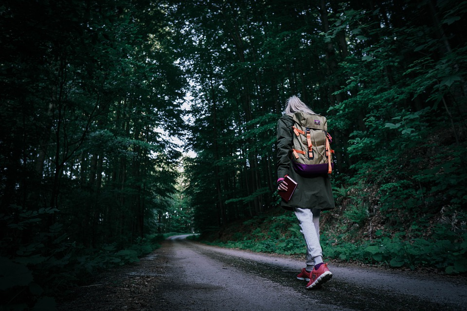 лагерь лес