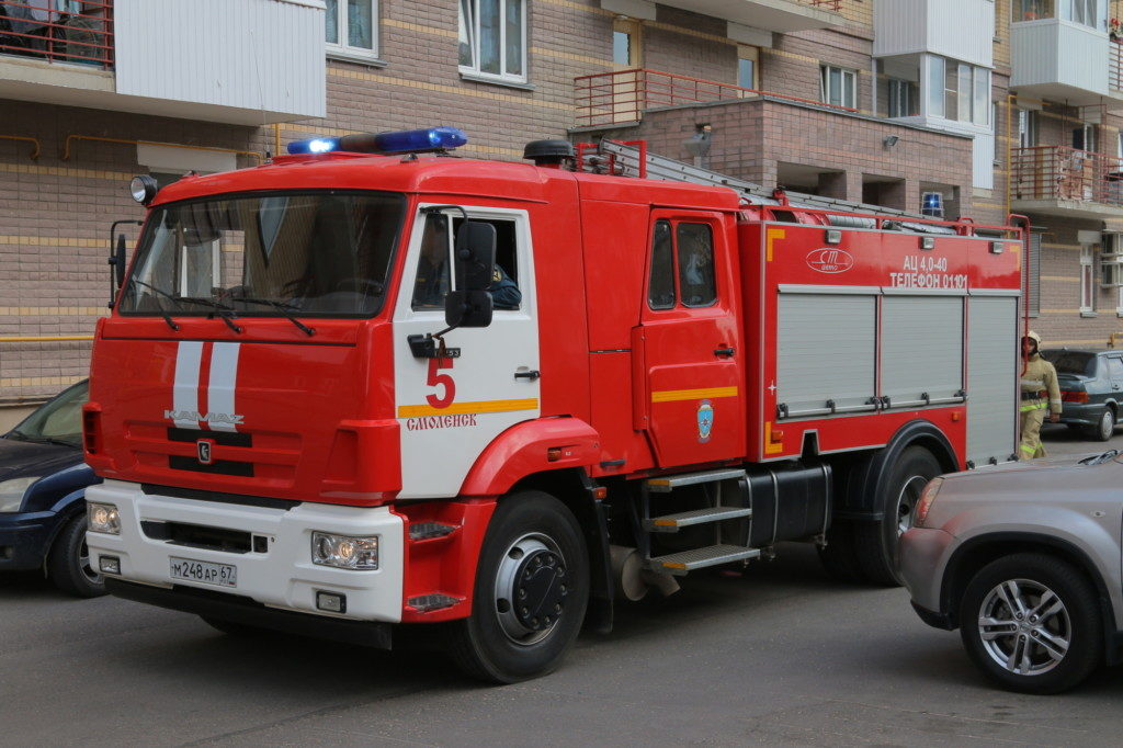 Миловидово, Новый Смоленск, пожар (фото 67.mchs.gov.ru)