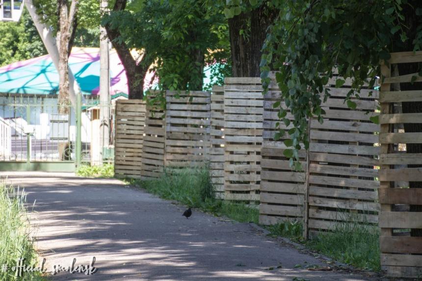 ограждение деревьев