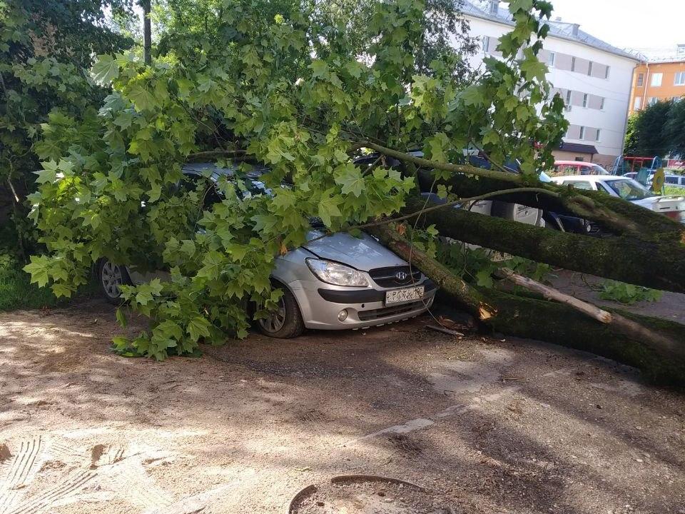 упавшее дерево 9.07.2020, Тухачевского, 7, Hyndai