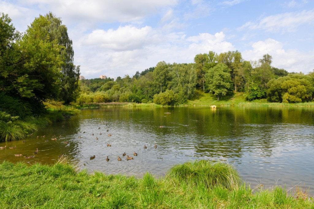 озеро Скворцова дача