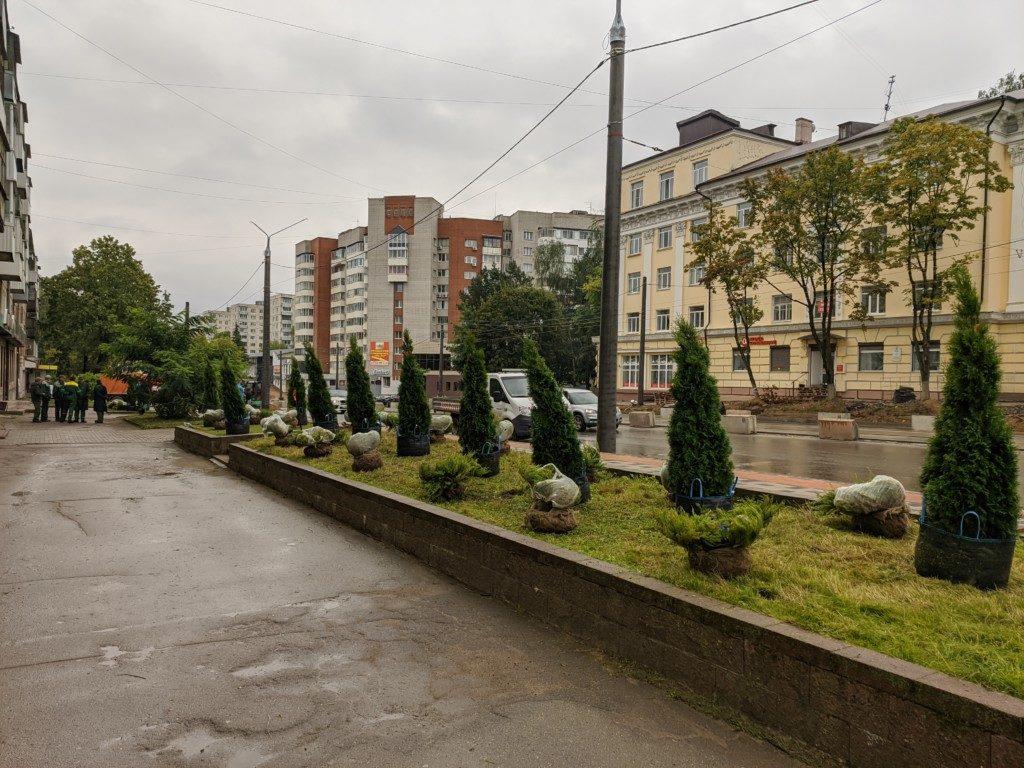 высадка декоративных деревьев 10.09.2020 на Николаева_1