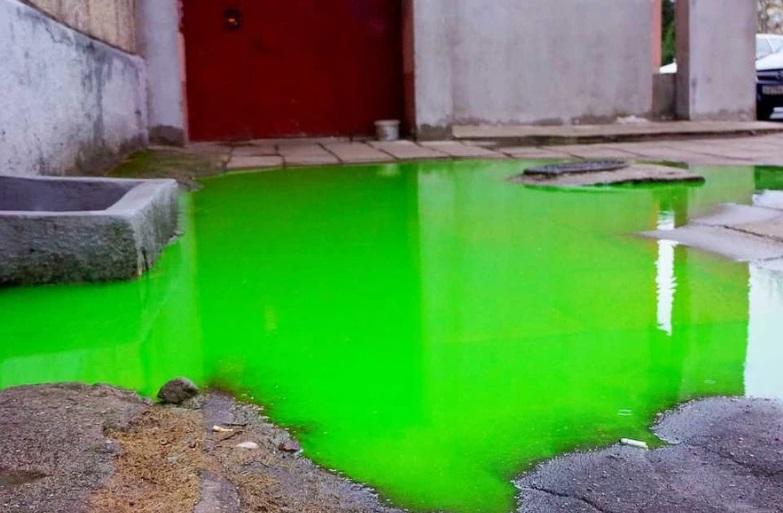 зеленая вода (фото ural.kp.ru)