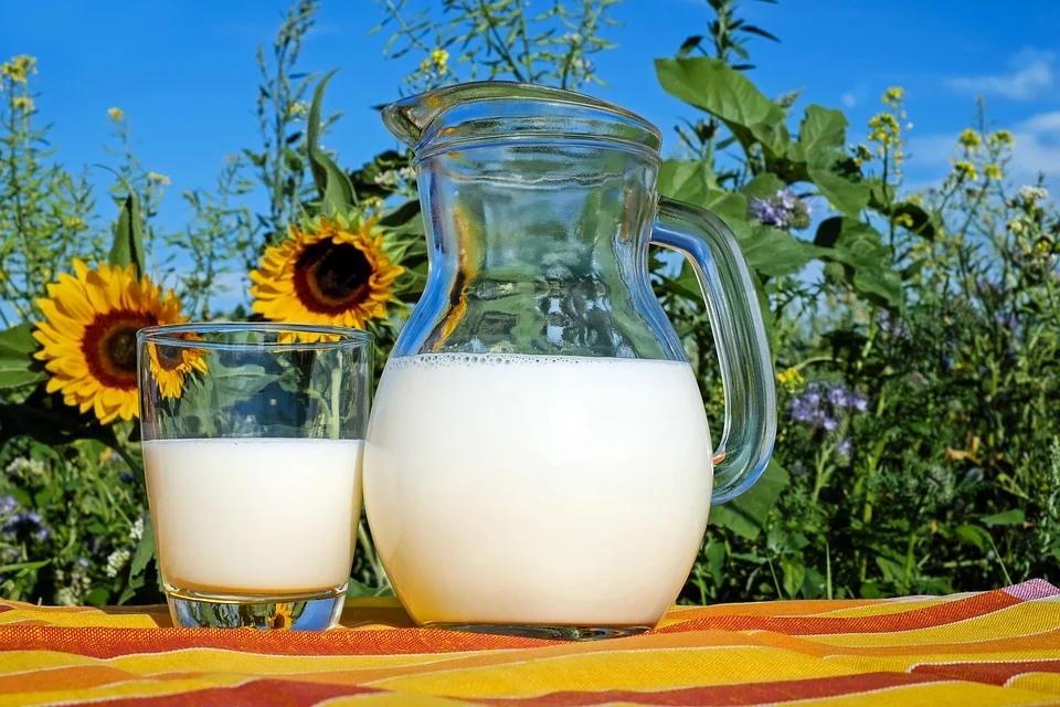молочная продукция молочка молоко