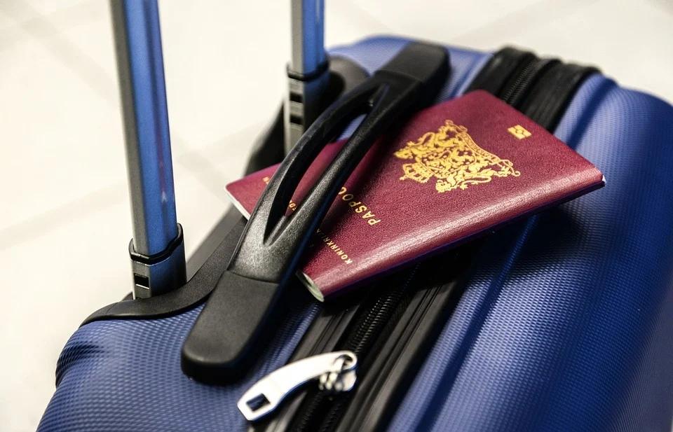 чемодан тпуск