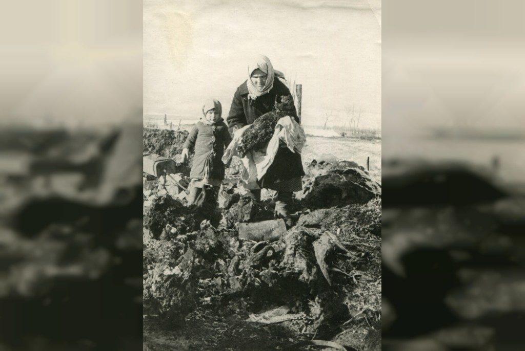обгорелые трупы сожженных женщин и детей дер. Осташково Издешковского (ныне Сафоновского) района, март 1943 г. (фото Смоленского государственного музея-заповедника)