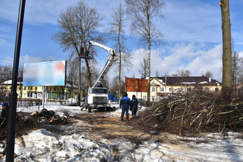 вырубка и кронирование старых деревьев в центральном сквере Сафонова, февраль 2021 (фото vk.com vsafonovo)