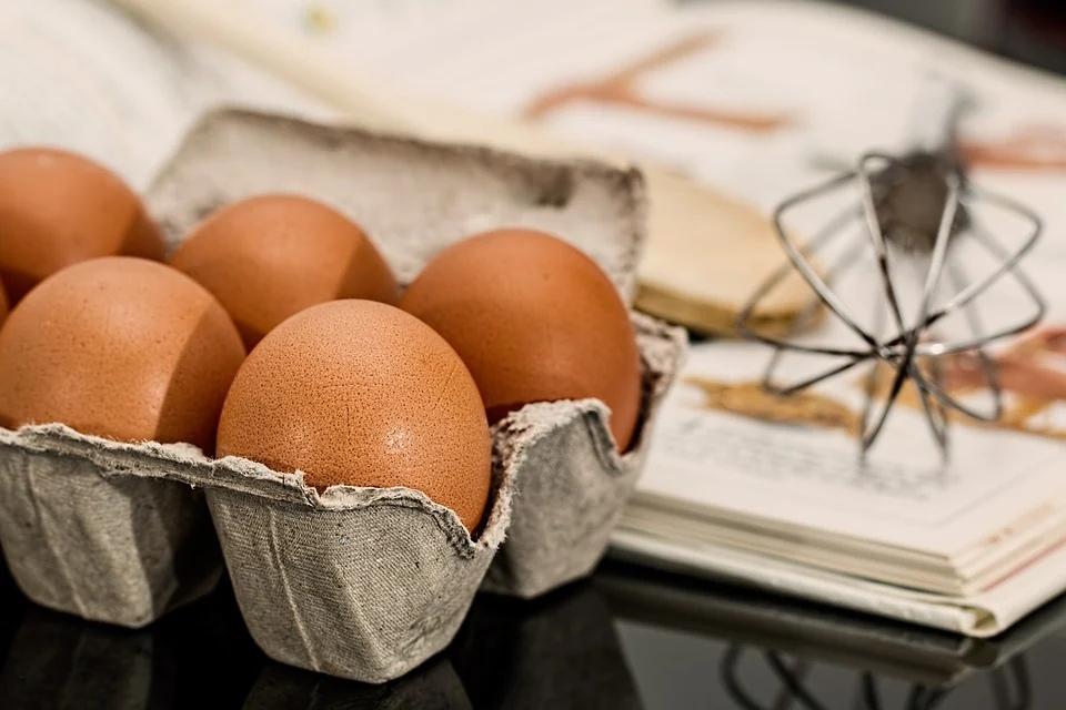 Смоленская птицефабрика «Сметанино» запустила яичную «баню»