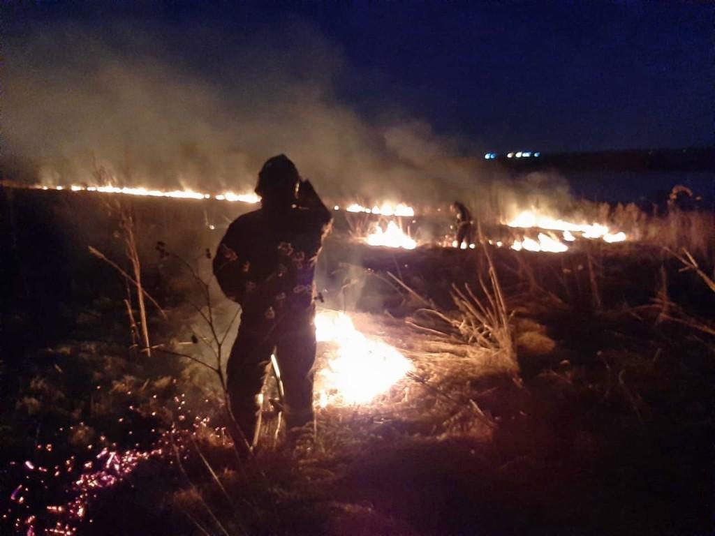 пал сухой травы 25.03.2021, Смоленский район, недалеко от озера ТЭЦ-2 (фото 67.mchs.gov.ru)