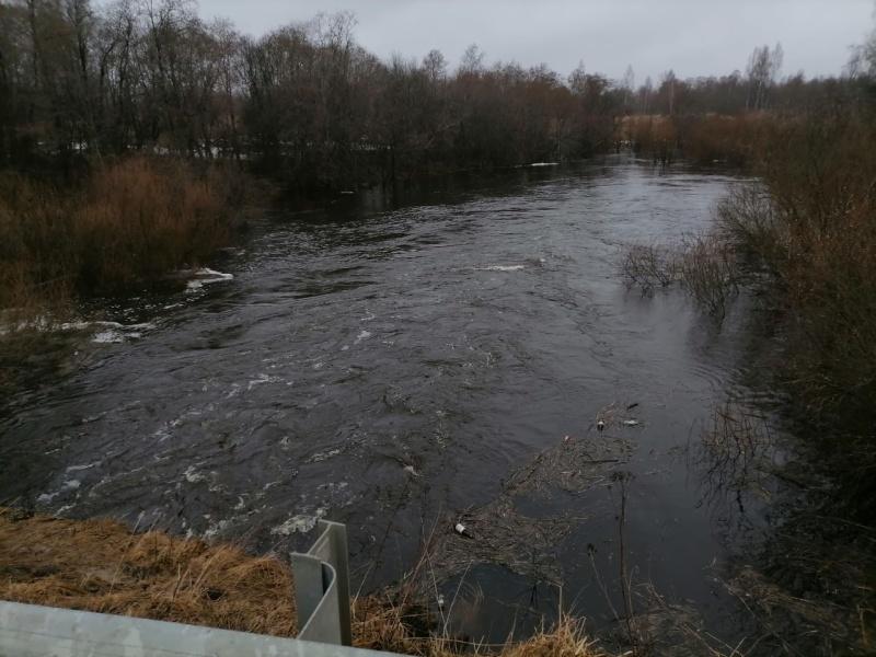 Спасатели сообщили о подтоплении в трех районах Смоленской области