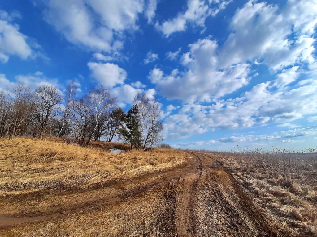 весна, поле, заморозки, распутица (фото 67.mchs.gov.ru)