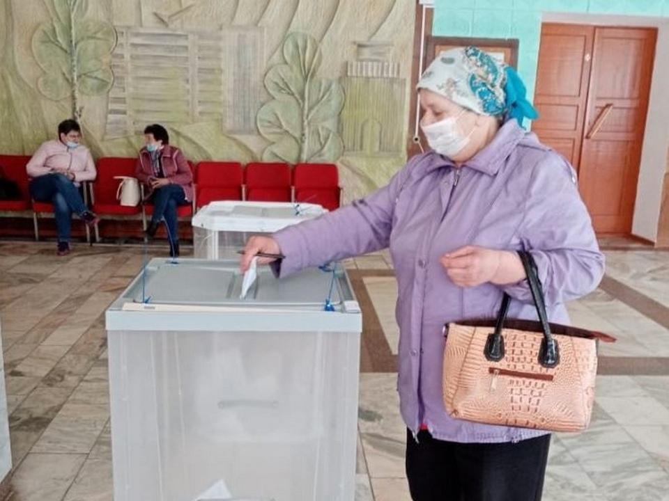 довыборы 15-16.05.2021 в облдуму (фото vk.com rosh_67)