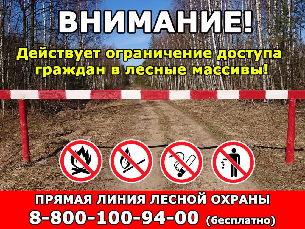 ограничение на доступ в лесные массивы (иллюстрация лесопожарной службы Смоленской области)
