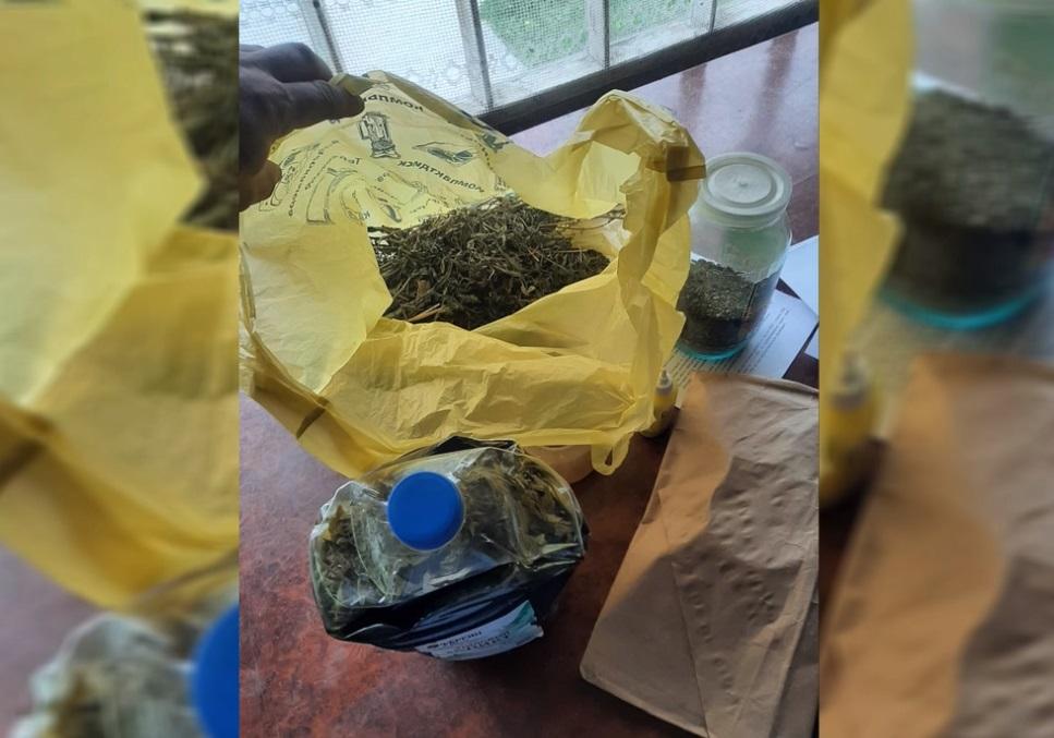 В Смоленске задержали наркоторговца с крупной партией марихуаны и оружием