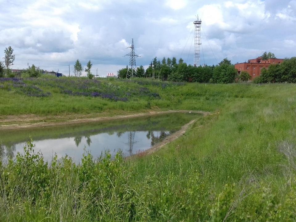 окраина Яблоневого сада в Ярцеве вблизи трассы М1 - заброшенный пруд и вид на мотель Оазис (фото Дмитрия Сатанова)