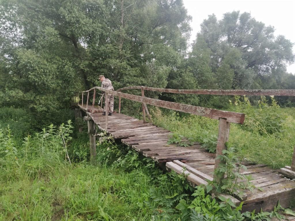 пешеходный мост через реку Большая Гжать 30.06.2021 в гагаринской деревне Алекссеевка