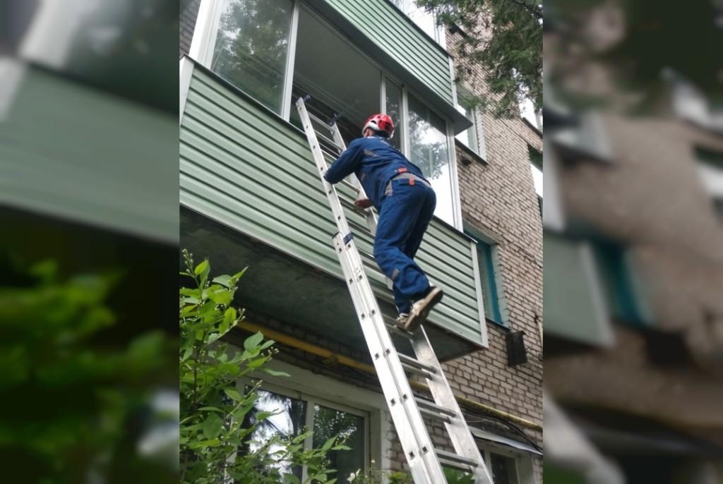 спасение пенсионерки 10.06.2021 из закрытой квартиры, Гагарин (фото vk.com smolspas67)