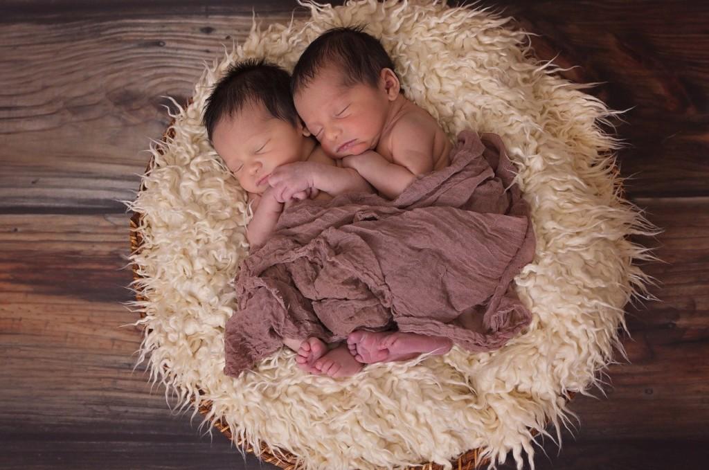 twins-1628843_1280 (1)