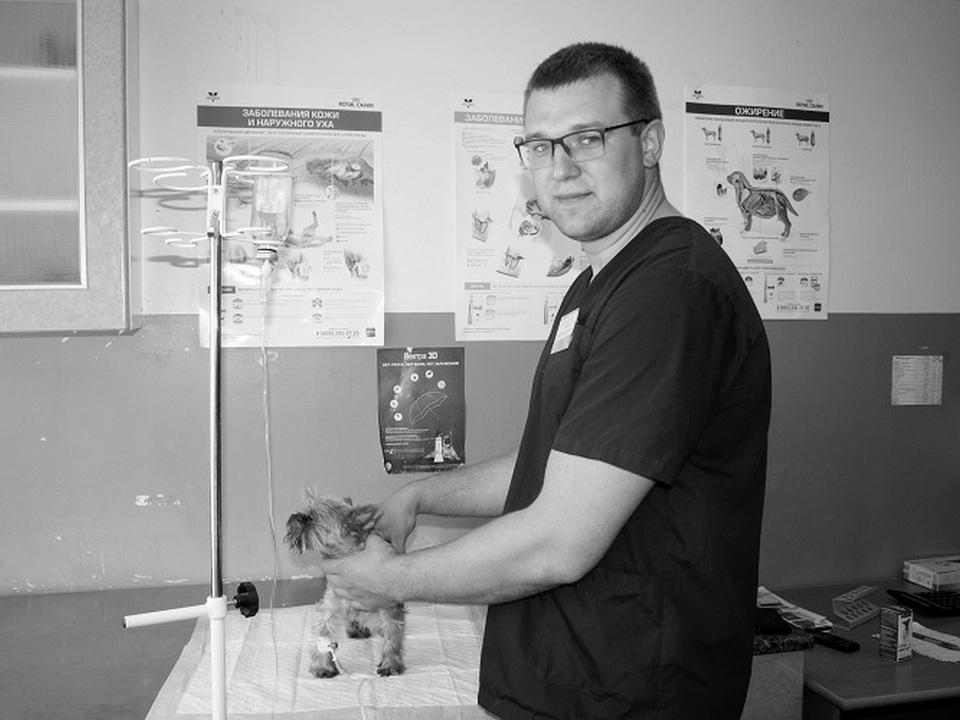 ветеринар Вадим Грицкевич (фото selpravda67.ru)