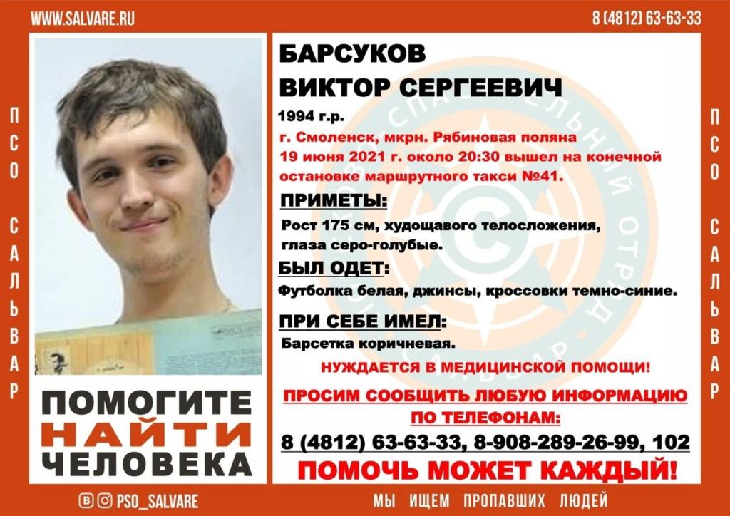 Виктор Барсуков, Рябиновая роща