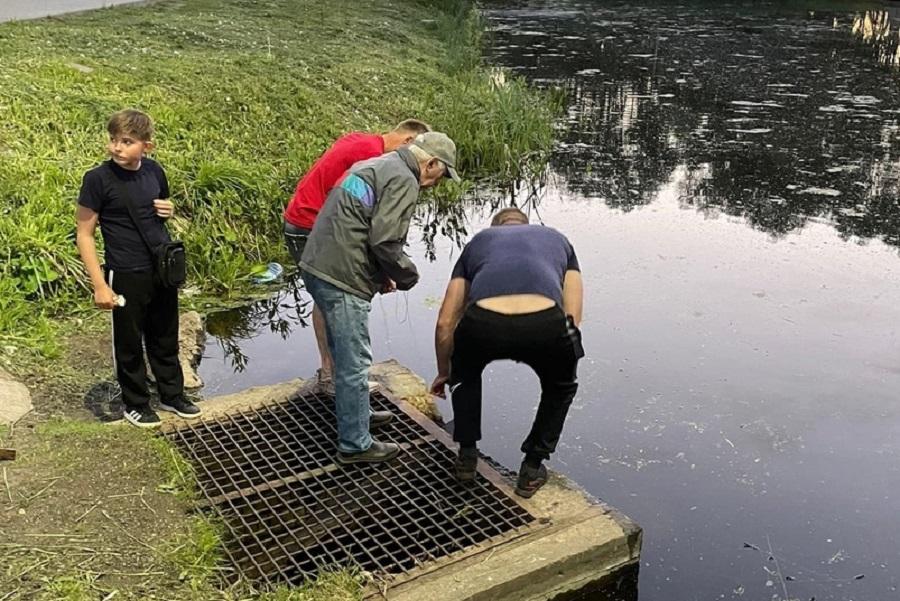 Под Смоленском посетители парка спасли провалившегося в канаву  утёнка