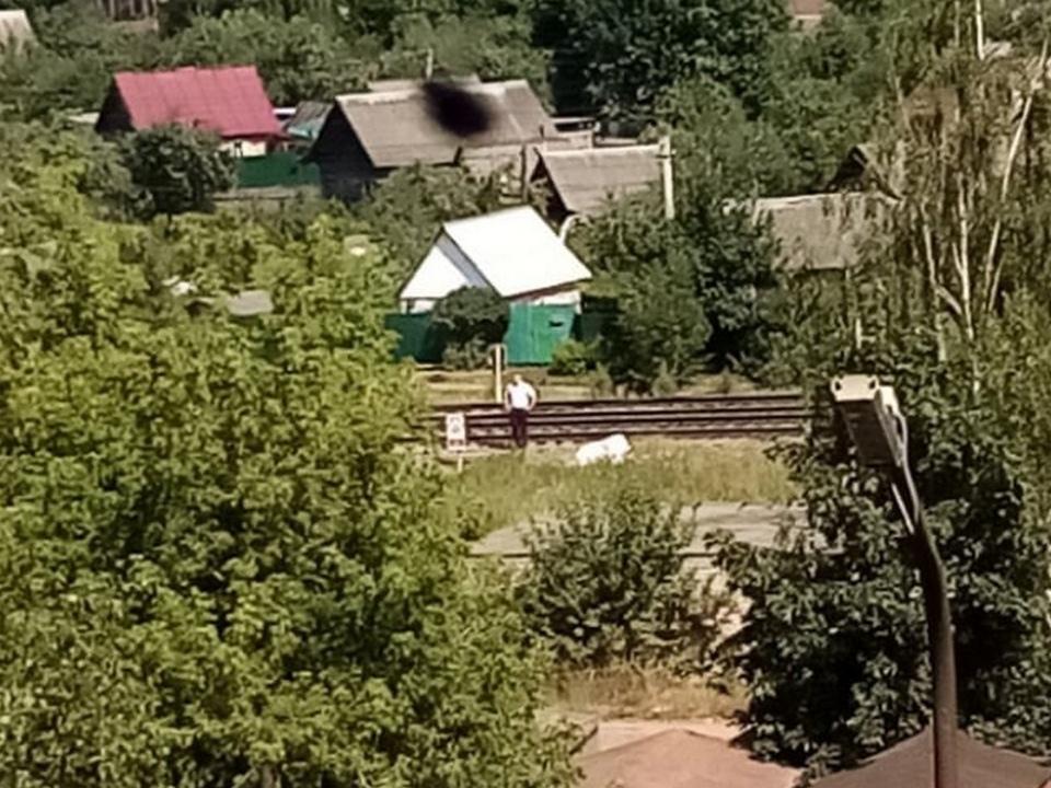 электровоз сбил 14.07.2021 пенсионера, Ярцево (фото vk.com yarzevo67)
