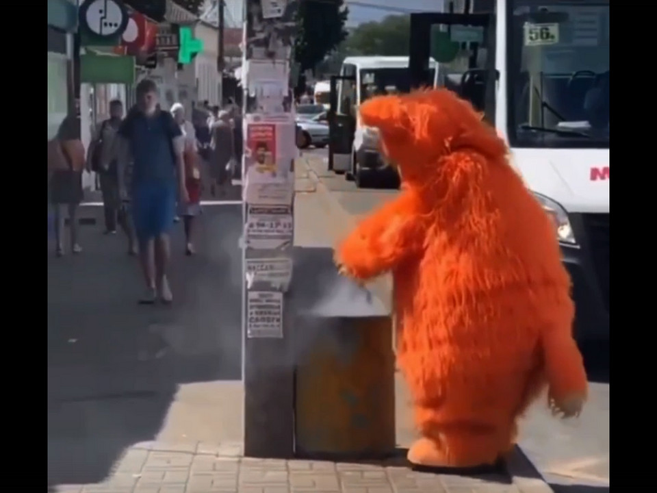 актёр в костюме кота тушит горящую мусорку, Колхозная площадь, август 2021 (кадр видео instagram.com podslushanosmolensk)