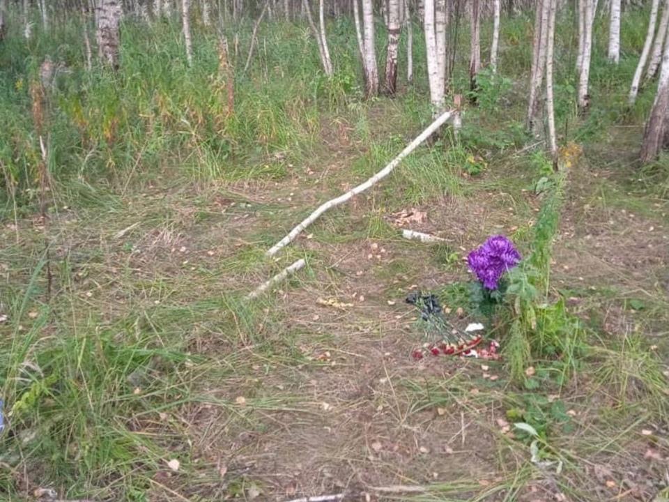 место обнаружения мёртвого мужчины 11.08.2021 у трассы Ольша-Велиж (фото vk.com id672390104)