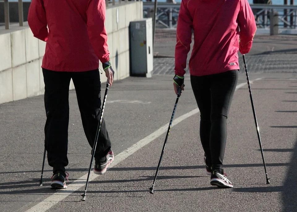 скандинавская ходьба спорт